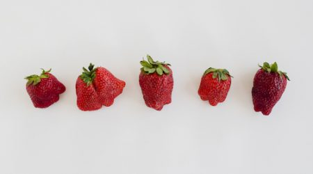 fraise moches fruits